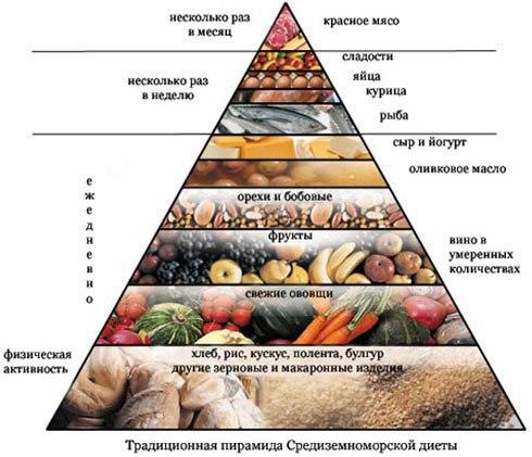Правильное питание – главное условие здорового образа жизни человека