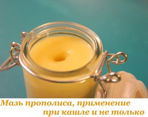 Прополис против простуды