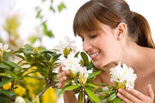 Какие запахи улучшают настроение