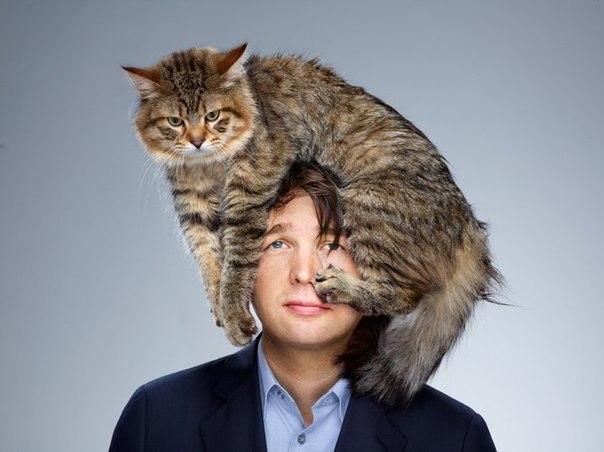 Почему кошка ложиться на больное место человека?