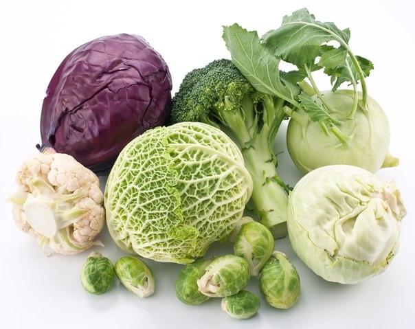 Полезный свойства разных видов капусты