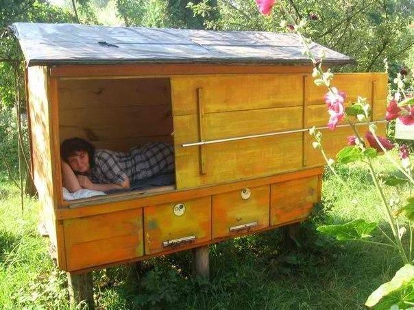 Здравый сон с пчелами