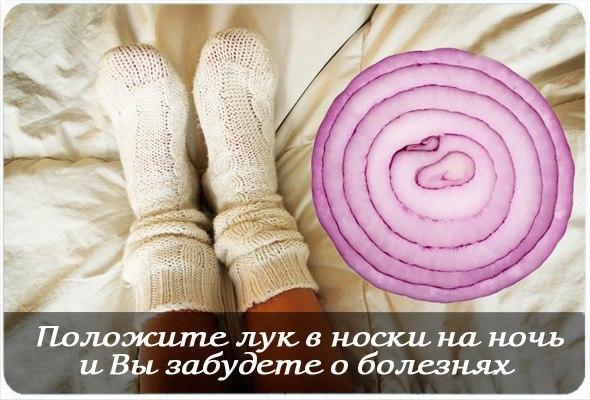 Положите лук в носки на ночь и Вы забудете о болезнях. Положите лук в носки на ночь и Вы забудете о болезнях