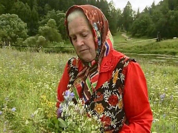 Монастырская травница: Хотите быть Здоровыми - накопайте себе три корня - лопуха, пырея и одуванчика. 11523.jpeg