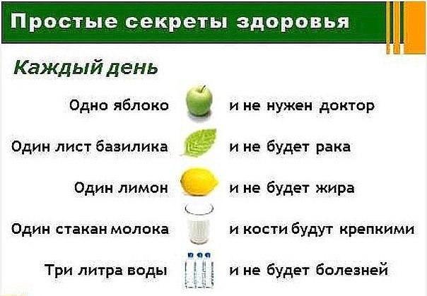 Самые простые рецепты здоровья с тем, что всегда под рукой. 11559.jpeg