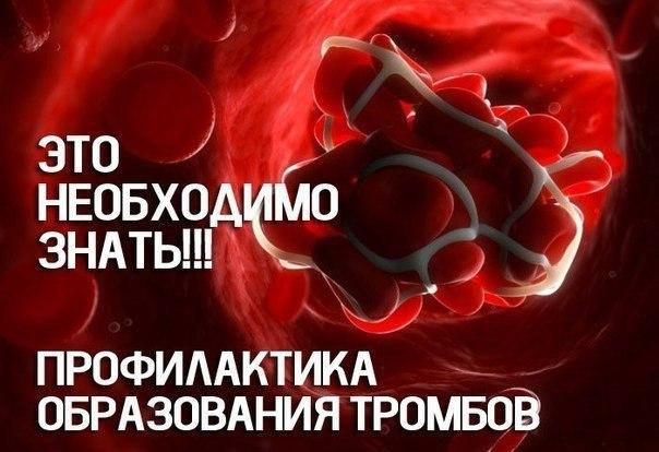 Густая кровь: о чем необходимо знать!. 11573.jpeg