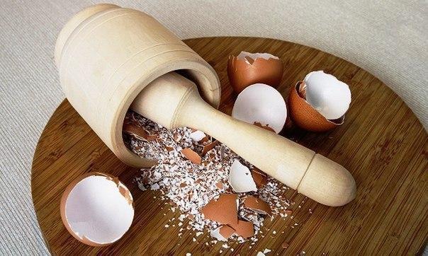 Ты перестанешь выбрасывать яичную скорлупу, узнав об этом!. 11592.jpeg