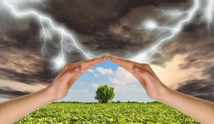 Как лечить метеозависимость травами?. 12662.jpeg