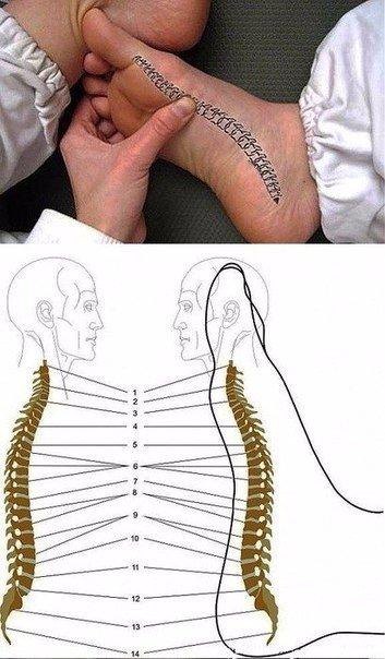 Как снять боль в спине при помощи стопы?