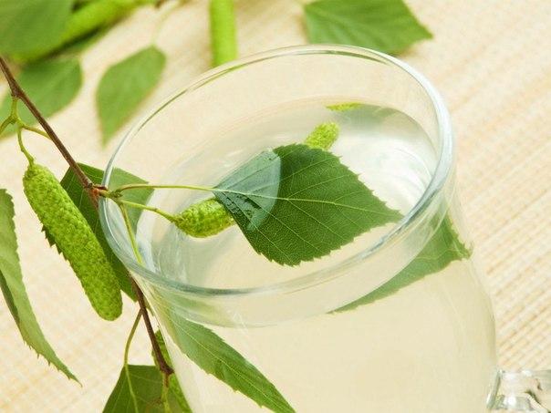 Польза березового сока - народные рецепты