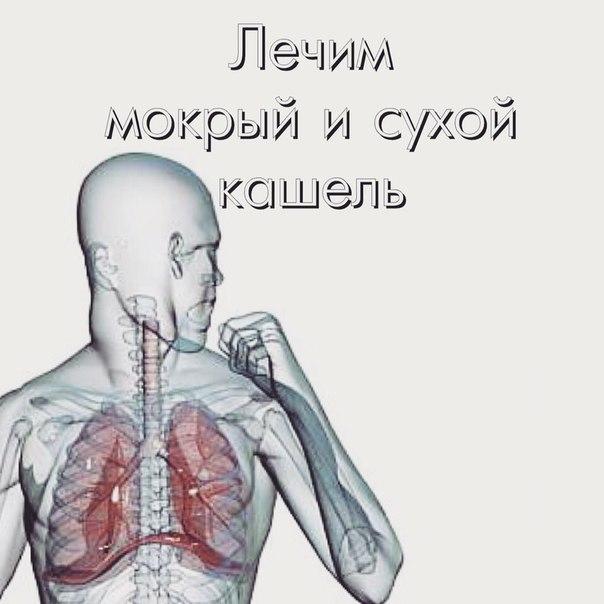 Кашель – рефлекс, направленный на устранение из дыхательных путей пыли, инородных тел и слизи