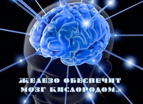 Железо обеспечит мозг кислородом