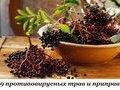 Девять противовирусных трав и приправ