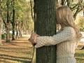 Целительная сила деревьев