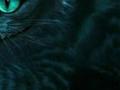 Удивительные советы по моделированию реальности от Чеширского кота