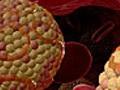 Как регулировать уровень холестерина в крови?
